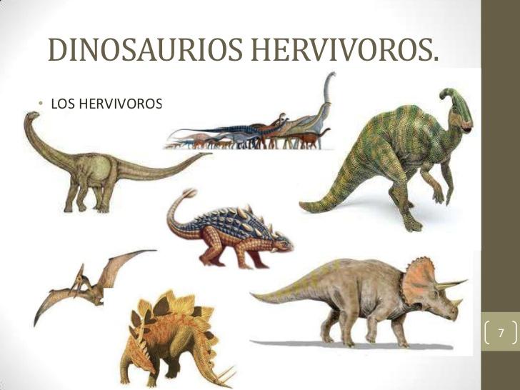 Dino Herbivoros Dinosaurios En todos los grupos de animales aparecen especies herbívoras, y los dinosaurios no fueron la excepción. dino herbivoros dinosaurios